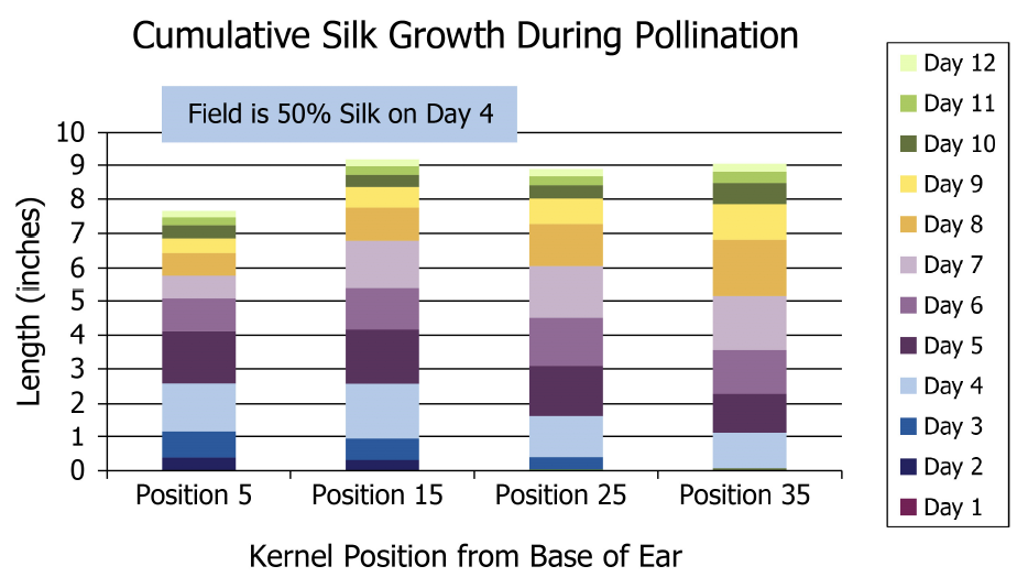 Cumulative Silk Growth